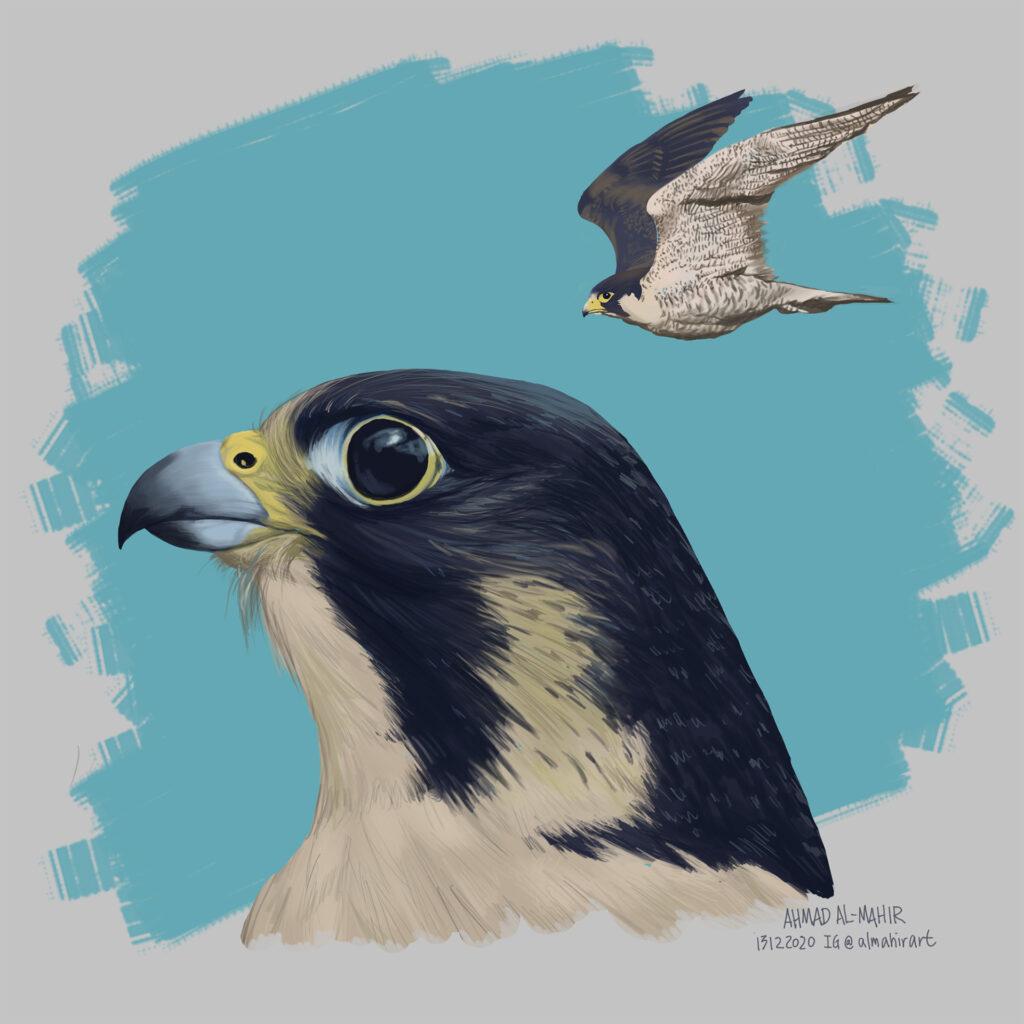 Peregrine Falcon Digital Painting